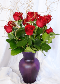 Dozen Red Roses bouquet | order flowers online_ the little flower shop florist_roses online