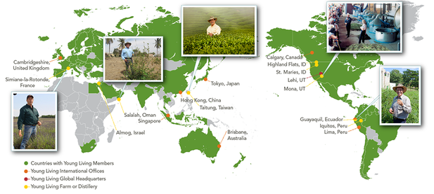 Young Living Worldwide Map