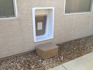 Electronic Dog Door Installation Phoenix