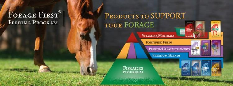 Forage First Products are available at Performance Blenders