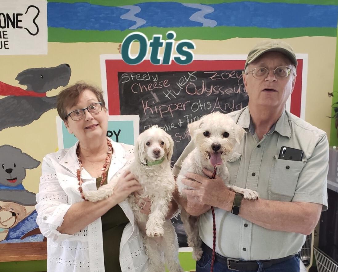 Wish Bone Canine Rescue