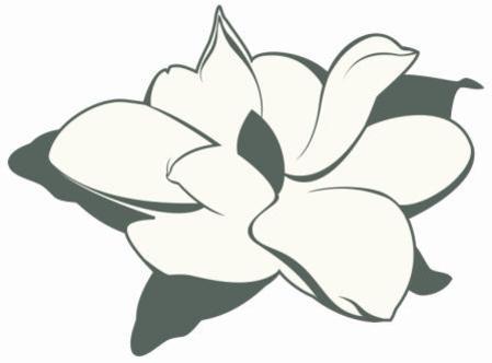 Magnolia Clipart
