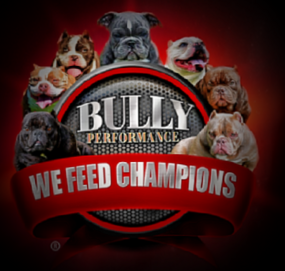Bully Performance dog food created especially for Bully dogs