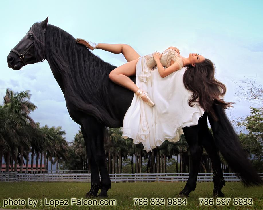QUINCEANERA WITH WHITE HORSE QUINCE PICTURES WITH HORSES
