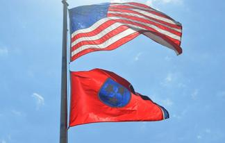 tennessee fighting freedom