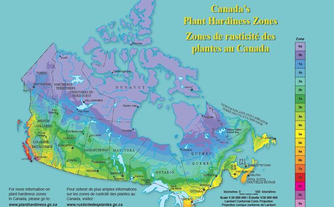 Plant hardiness zone for Gardening zones ontario