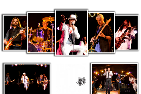 The Hip Show Website