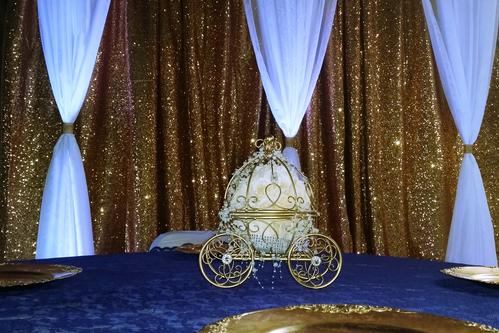 Backdrops And Ceiling Decor We Have Sequins Backdrop