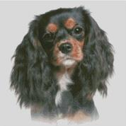 Cross Stitch Chart of a Cavalier King Charles Spaniel