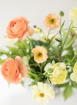 farm flowers to you, summer delivery, colorado florist