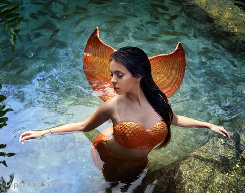 Quinceanera photography mermaid theme Underwater quinceanera photography in miami