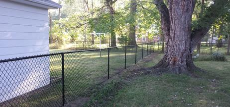 Chain Link Fence from Willoughby Fence