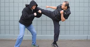 Martial Arts and Combatives