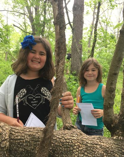 Campers explore a forest ecosystem