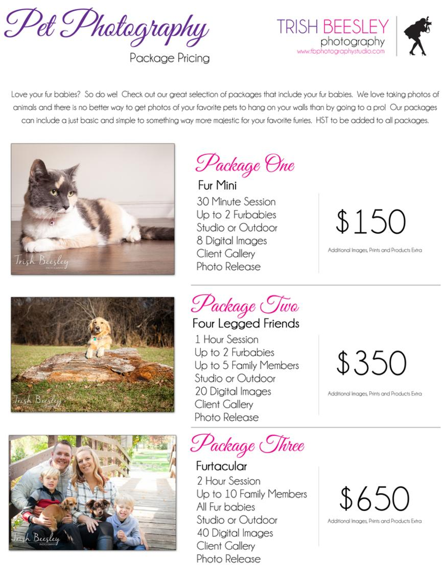 Pet Photography Pricing Sessions