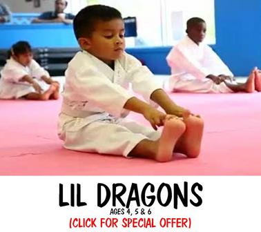 MARTIAL ARTS KARATE FOR KIDS METUCHEN EDISON