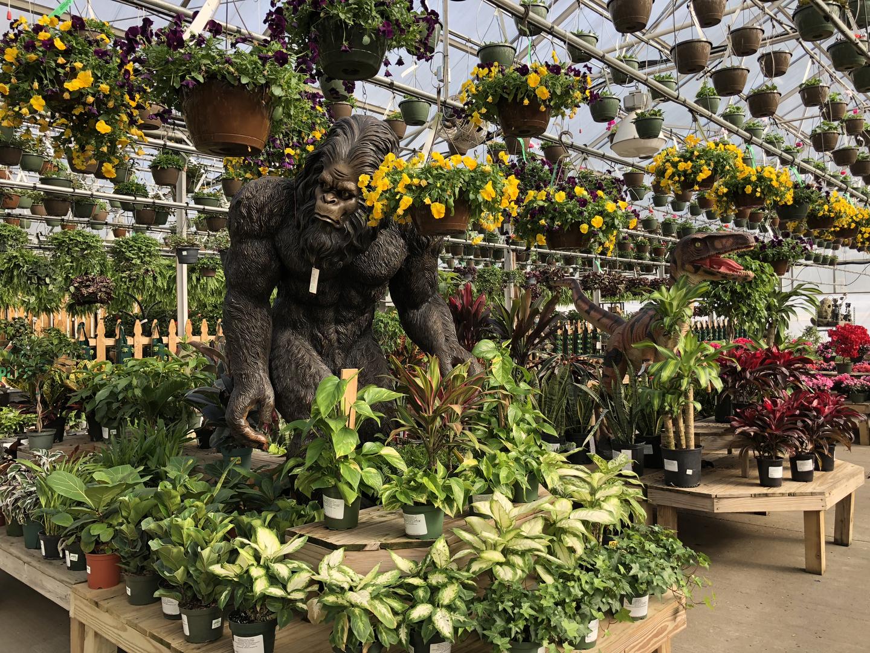 Quality Plants & Landscape Supply - Maria Gardens Center
