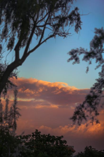 orange sunset clouds over azure blue sky in forest