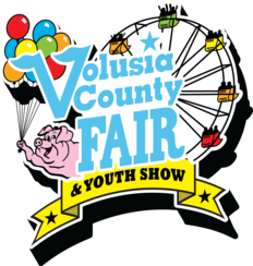 Image result for volusia county fair