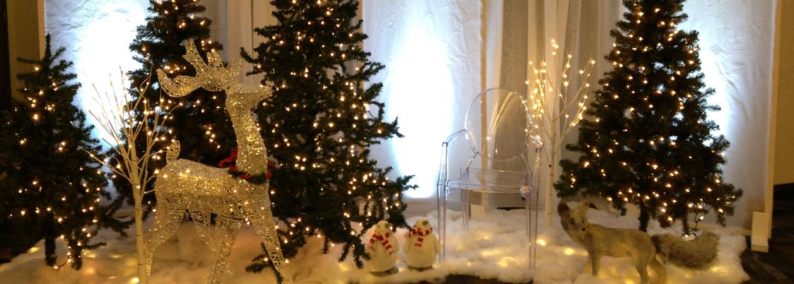 Winter and Christmas Decor and rentals, props, trees