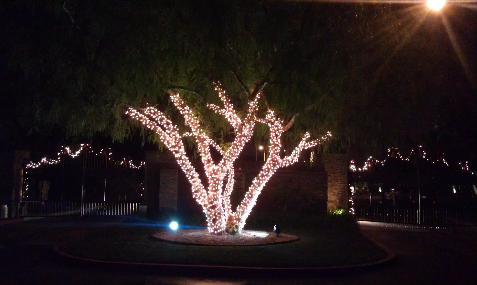 California Christmas Lighting Hoa Holiday Lighting And Decor ...