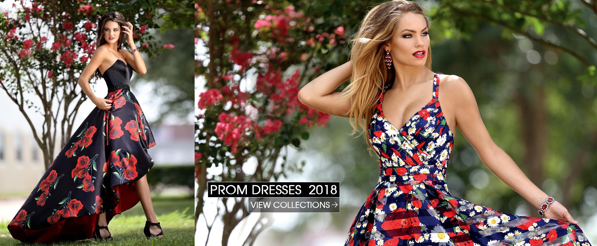Vanessas Boutique Prom Dresses Formal Wear