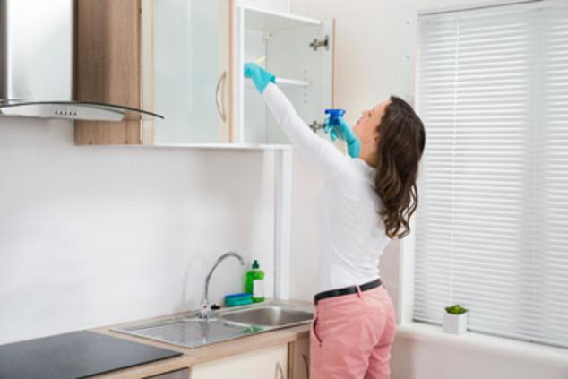 Best apartment move in out cleaning services in Edinburg Mission ...