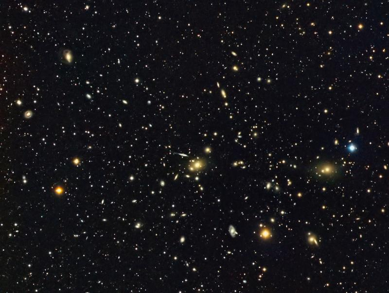 Leo Cluster
