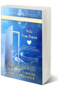 Grief Diaries Hello From Heaven book