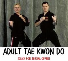 MARTIAL ARTS TAEKWONDO FOR ADULTS METUCHEN EDISON