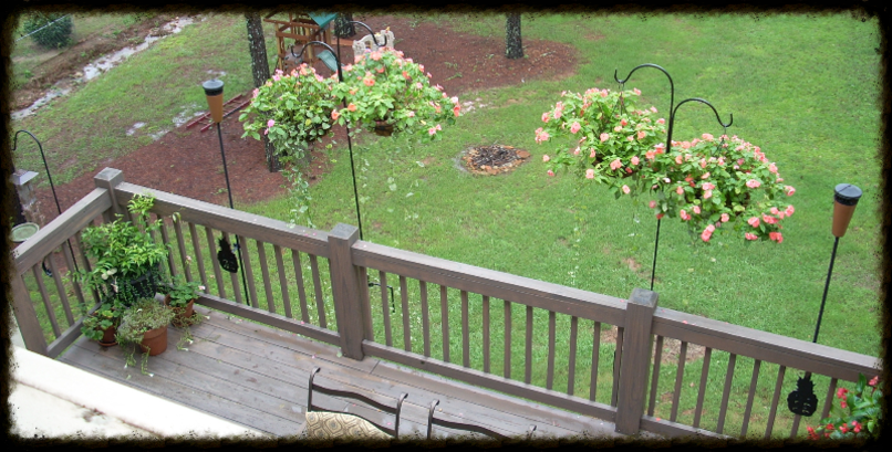 Railhookz clamp on bird feeder hangers