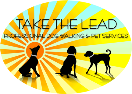 Take The Lead Dog Walker Blackpool Dog Walking Pet