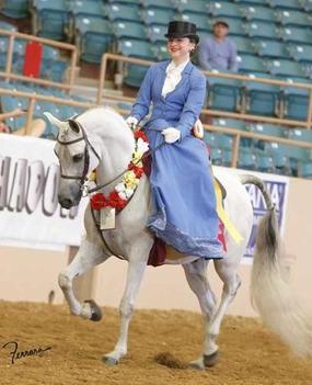 Rushlow Arabians - Home
