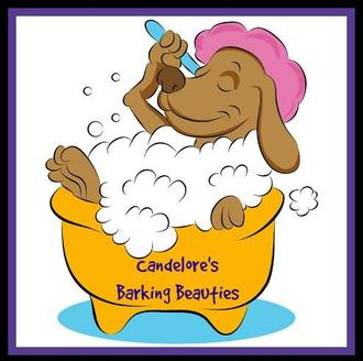Candelores barking beauties elizabeth and white oak pa about always bear in mind that our dog groomers are pleasant professional and caring keeping you and your pet happy will always be our top priority solutioingenieria Images