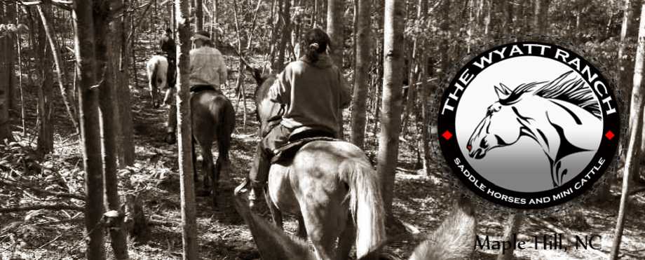 Trail Rides Nc, Sc, Va 2020 For Halloween Trail Ride Schedule