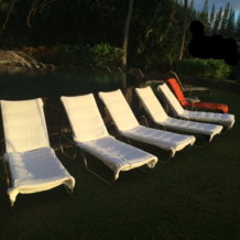 Professional Lounge Chair Covers