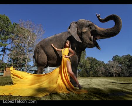 BEST QUINCEANERA DRESS MIAMI YELLOW QUINCE DRESS
