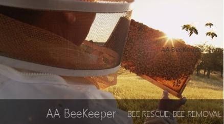 Jamul Beekeeper and bee removal