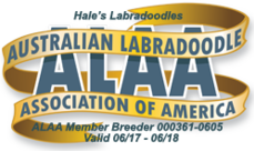 Australian Labradoodle Association of America Logo