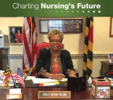 Charting Nursing's Future