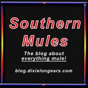 Southern Mules Blog