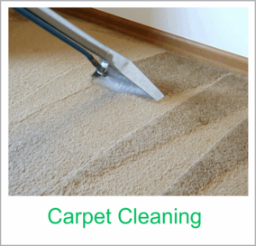 green rhino carpet cleaning