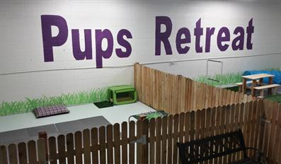 Pups Retreat dog daycare in Denver