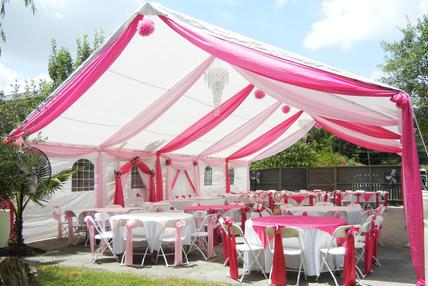 pink and fushia 30x50 canopy
