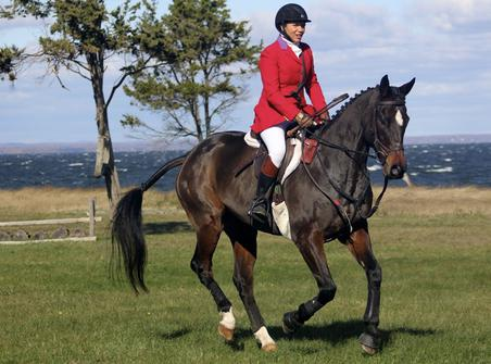 Bay Breeze Farm Eventing Horses For Sale Fox Hunting