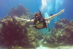 scuba diving cancun and cozumel