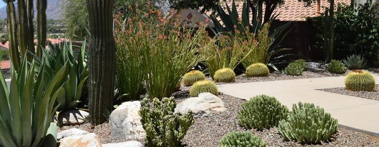 LAS VEGAS LANDSCAPING SERVICE Please Contact Us for a Quote