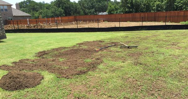Landscaping Leveling Yard : Lawn leveling
