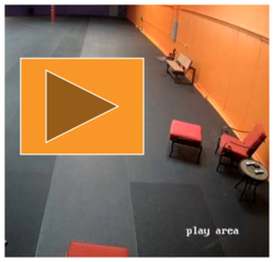 Live webcam: Play area