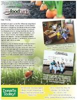 Get the Spring Newsletter in PDF